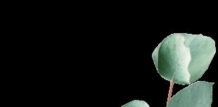 Eaux florales - E