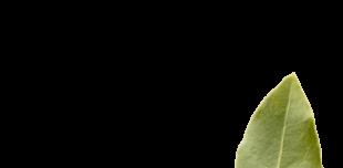 Eaux florales - L