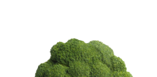 Huiles végétales - B