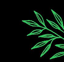 feuilles décoratives